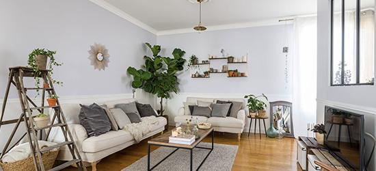 Comment aménager son intérieur avec des plantes dépolluantes?